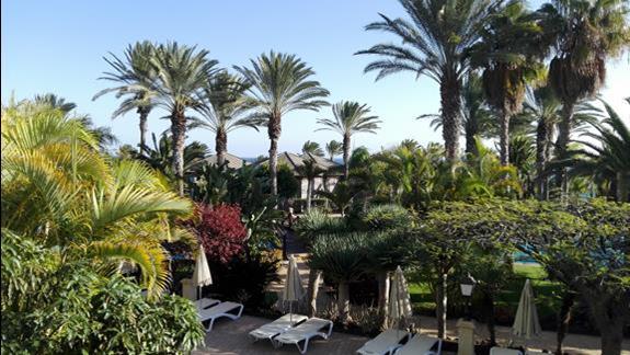 Ogród w hotelu R2 Rio Calma