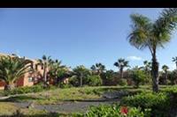 Hotel Oasis Papagayo Resort - Ogród  w hotelu Oasis Papagayo