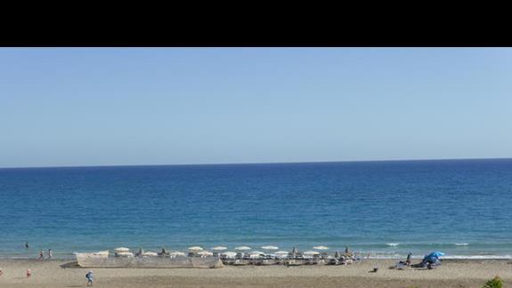 Plaża przy hotelu Monica Beach