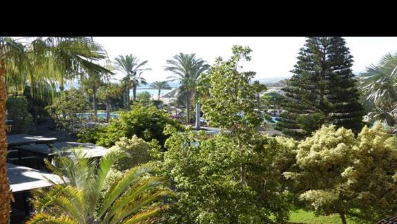 Ogród w hotelu Barcelo Fuerteventura