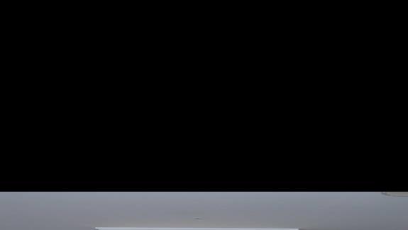 kwiaty w holu