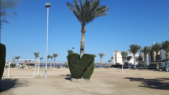 Teren hotelu z plaza i boiskami