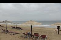 Hotel Miramar Al Aqah Beach Resort - Plaża przy hotelu Miramar Al Aqah Beach Resort