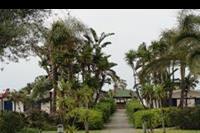 Hotel Le Dune Beach Club - Le Dune Beach Club - ogród