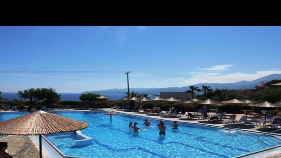 basen w hotelu Semiramis Village