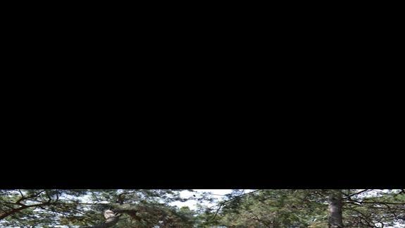 Teren hotelu Otium Life