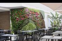 Hotel Bronze Playa - Czesc hotelowa przy barze  Bronze Playa