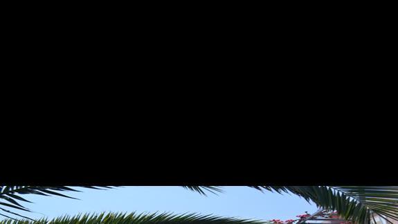 Teren hotelu hotelu Sissi Bay