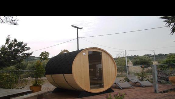 Sauna Arion