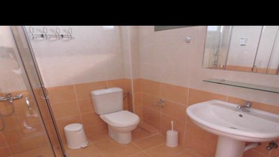 Łazienka w pokoju standard w Ionian Sea