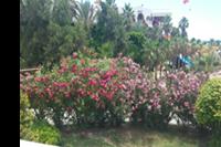 Hotel Club Side Coast - Extra roślinność!