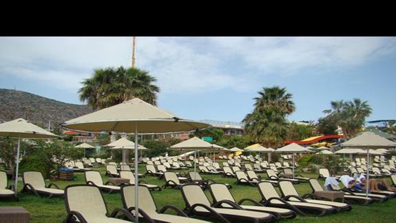 leżaków wystaczy dla każdego :) w  Star Beach Village