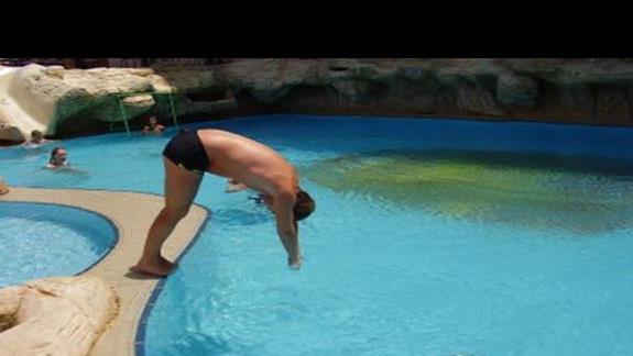 Orka wskakuje do wody ;)