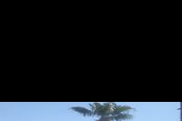 Hotel Arabia Azur - widok na basen