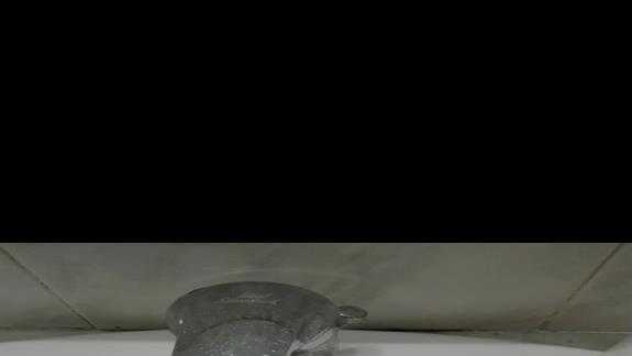 Łazienka z mrówkami