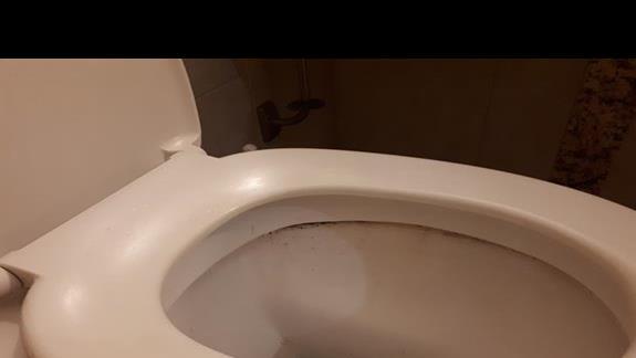Tak wygląda sprzątnięta toaleta