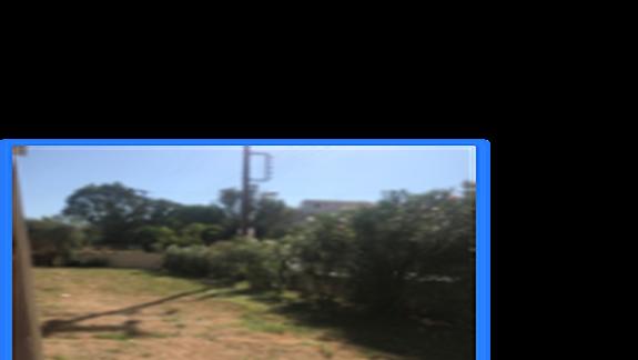 Zero trawy i syf przed balkonami