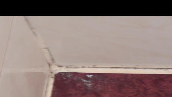 grzyb na silikonie w łazience