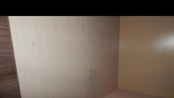 grzyb w szafie na ubrania