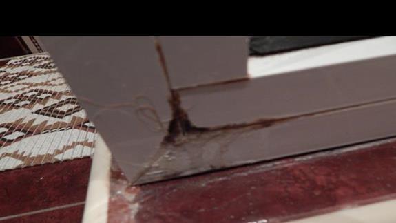 grzyb na zewnątrz kabiny prysznicowej