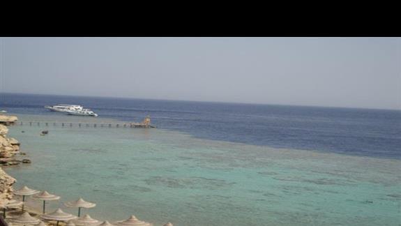 plaza przy rafie koralowej