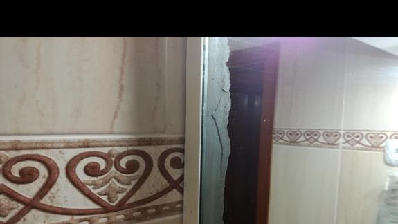 Grzyb na lustrze
