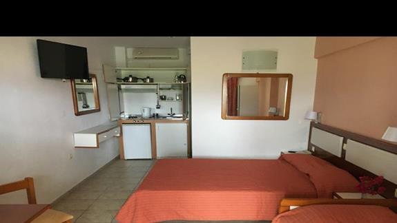 Pokój typu studio w hotelu Palatino
