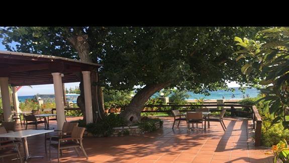 Ogród w hotelu Tara Beach