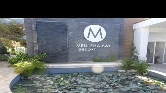 wejście do hotelu Mellieha Bay