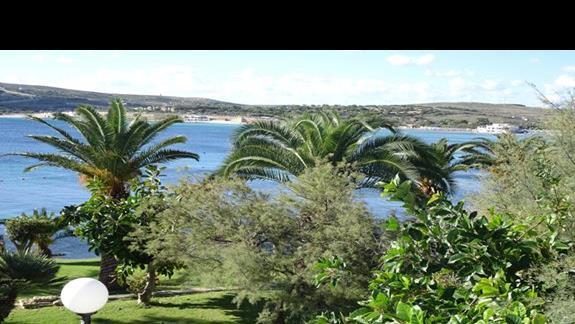 ogród w hotelu Mellieha Bay