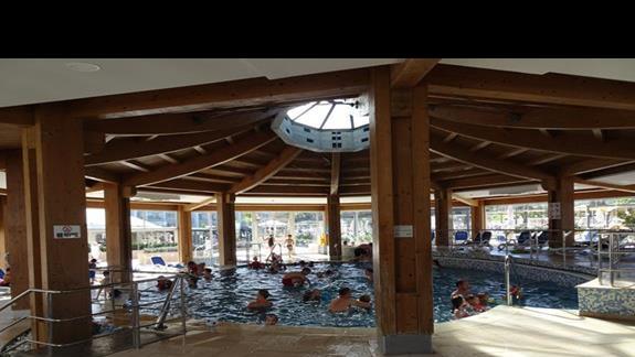 basen kryty w hotelu Seabank