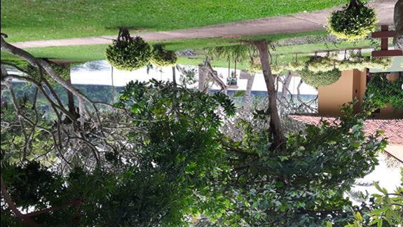 teren hotelu - laguna