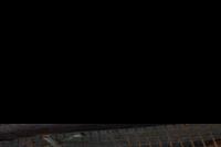 Hotel Park Club Europe - Papuga w mini zoo
