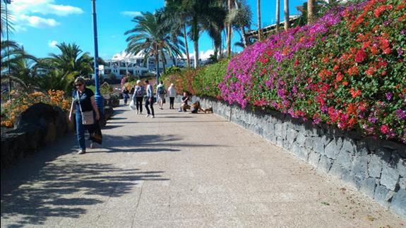 promenada Playa Blanca