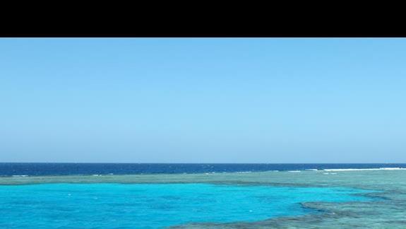 Przepiękne rafy Egipskie Malediwy - Wyspy Qulaan